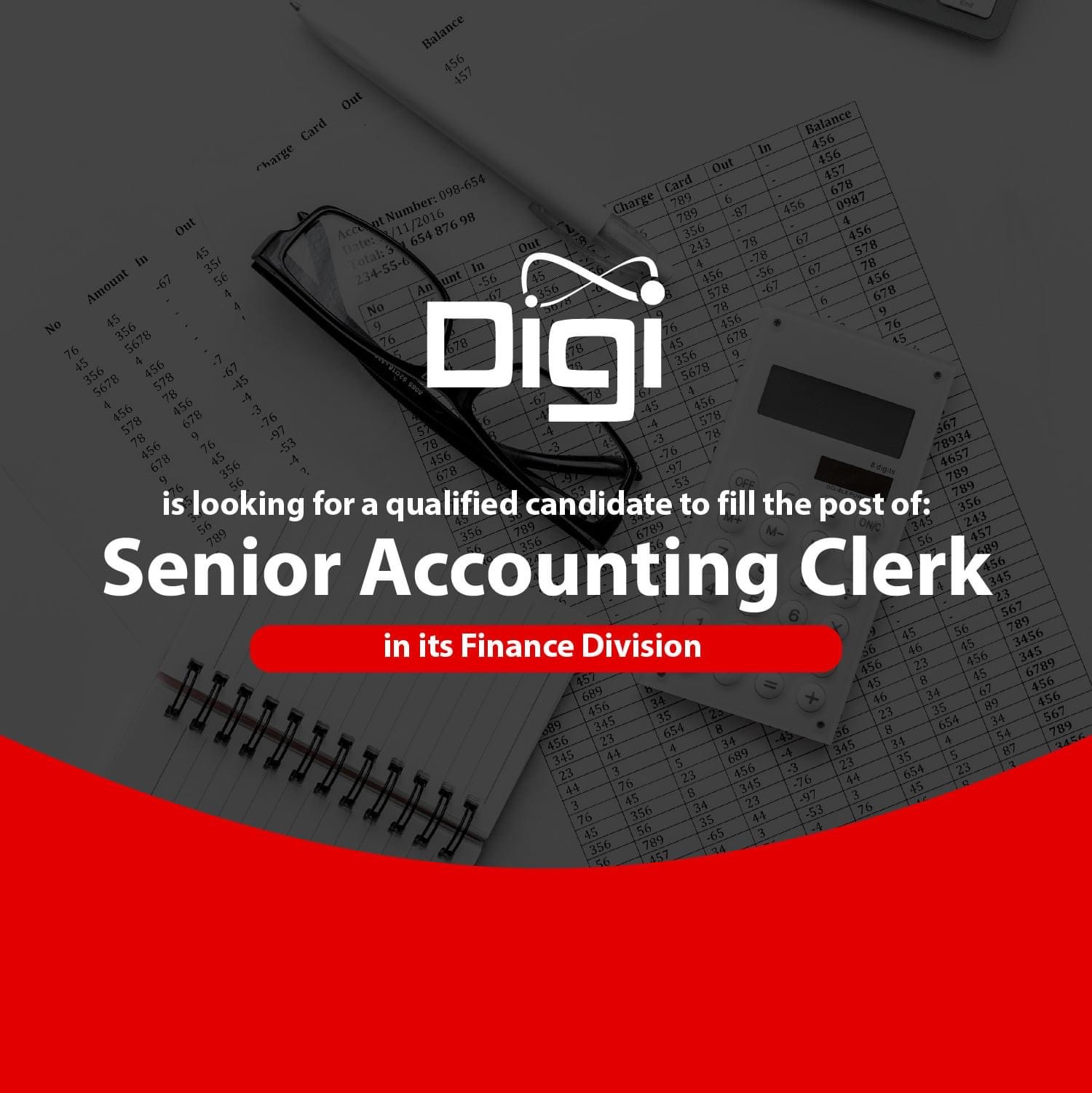 VACANCY: Senior Accounting Clerk at Digi Belize