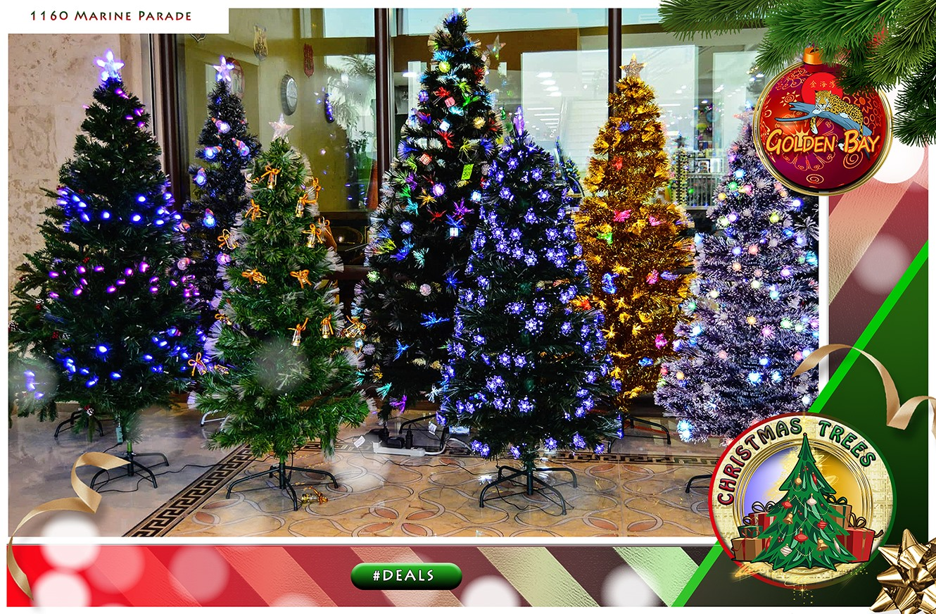 10% off on ALL Christmas trees and Toys every Saturday and Sunday!